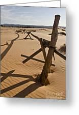 Desolate Greeting Card by Heather Applegate