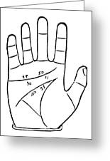 Diagram Used In Palmistry, 16th Century Greeting Card by Middle Temple Library