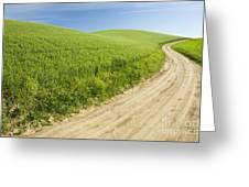 Dirt Road Through Field, Palouse, Washington Greeting Card by Paul Edmondson