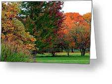 Distant Fall Color Greeting Card by Scott Hovind