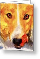 Dog Portrait Greeting Card by Yury Malkov