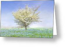Dogwood In The Mist Greeting Card by Debra and Dave Vanderlaan