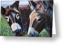 Donkey Tonk Greeting Card by Billie Colson