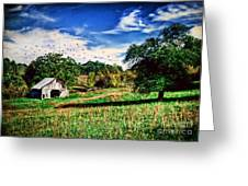 Down On The Farm Greeting Card by Darren Fisher
