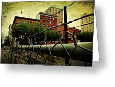 Down The Fence Greeting Card by Cathie Tyler
