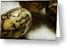 Dragon Eggs Greeting Card by Judi Bagwell