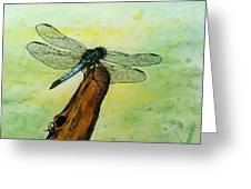 Dragonfly Greeting Card by Mamie Greenfield