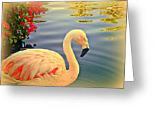 Dreamy Flamingo Greeting Card by Kevin Moore