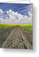 Dried Up Machinery Tracks Greeting Card by Dave Reede