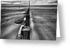 Drifting Sands Greeting Card by John Farnan