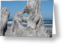 Driftwood Art Prints Coastal Blue Sky Ocean Waves Shoreline Greeting Card by Baslee Troutman