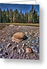 Dry Lake Greeting Card by Bonnie Bruno