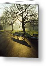Dublin - Parks, St. Stephens Green Greeting Card by The Irish Image Collection