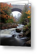 Duck Brook Bridge In The Rain Greeting Card by Dave Storym