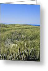 Dune Fence Greeting Card by John Greim