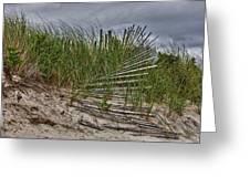 Dunes Greeting Card by Rick Berk