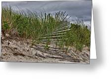 Dunes Greeting Card by Rick Berk