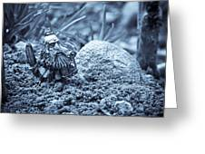 Dwarf Lost In The Enchanted Forest Greeting Card by Marc Garrido