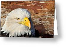 Eagle On Brick Greeting Card by Marty Koch