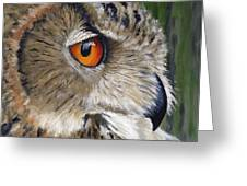 Eagle Owl Greeting Card by Mike Lester