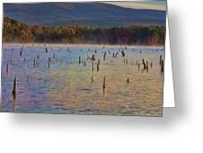 Early Morning Color Of Lake Wilhelmina-arkansas Greeting Card by Douglas Barnard