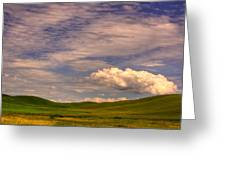 Early Summer Wheat In The Palouse Greeting Card by David Patterson