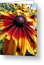 Earth Tone Greeting Card by Michelle Milano