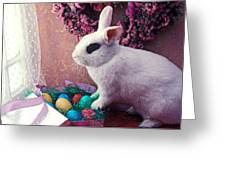 Easter Bunny Greeting Card by Garry Gay