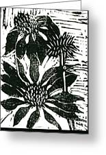 Echinacea Block Print Greeting Card by Ellen Miffitt