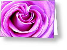 Effulgent Beauty Greeting Card by Hariette Brown