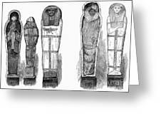Egypt: Royal Mummies, 1882 Greeting Card by Granger