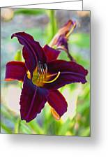 Electric Maroon Lily Greeting Card by Bill Tiepelman