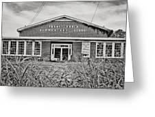 Elementary School Greeting Card by Scott Pellegrin