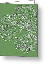 Embossed Roses Greeting Card by Will Borden