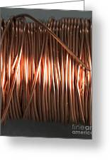 Enamel Coated Copper Wire Greeting Card by Photo Researchers