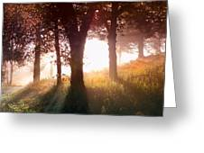 Enchanted Meadow Greeting Card by Debra and Dave Vanderlaan