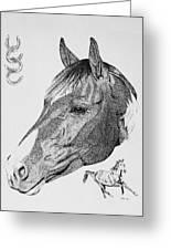 Equine Profile Greeting Card by Malc McHugh