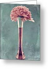 Estillo Vase - S01v4b2t03 Greeting Card by Variance Collections