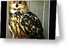 Eurasian Eagle-owl With Oil Painting Effect Greeting Card by Rose Santuci-Sofranko