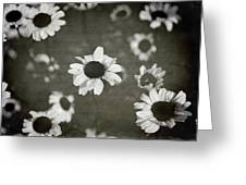 Even In Darker Days Greeting Card by Laurie Search