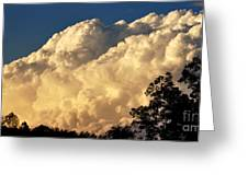 Evening Clouds Greeting Card by Thomas R Fletcher