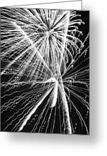 Explosions For Sovereignty And Liberty Greeting Card by Carolina Liechtenstein