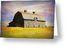 Fading Memories Greeting Card by Blair Wainman