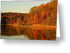 Fall At Patoka Greeting Card by Brandi Allbright