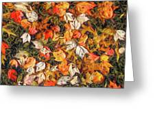 Fall Autumn Leaves On Water Greeting Card by Randy Steele