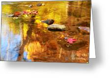 Fall Color in Stream Greeting Card by Charline Xia