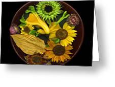 Fall Colors Greeting Card by J Arthur Davis