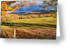 Fall Colours, Cows In Field And Mont Greeting Card by Yves Marcoux