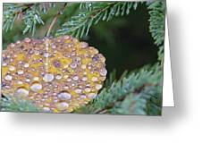Fall Ornament Greeting Card by Shirley Mailloux