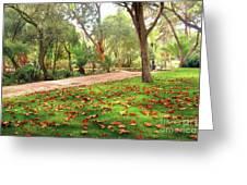 Fall Park Greeting Card by Carlos Caetano